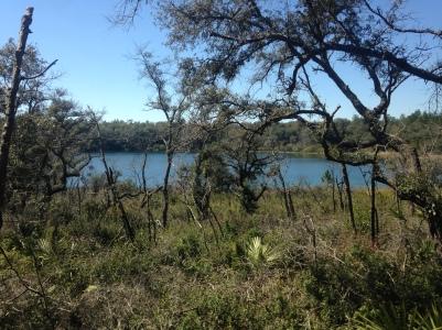 Sheeler Lake